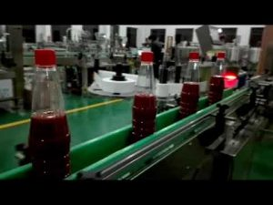 Mașină de umplere cu sticlă completă de mare viteză pentru ketchup, gem, sos